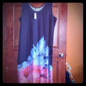 NWT  maxi dress